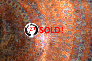 Peacock SOLD